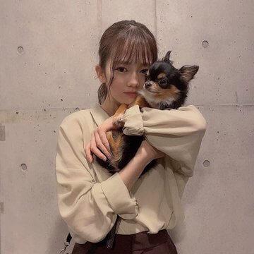 川口葵と実家の犬画像