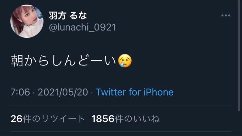 るなちゃんのツイート