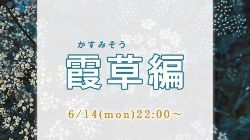 今日好き霞草編結果ネタバレ!最終回まで告白カップル予想と感想と考察!